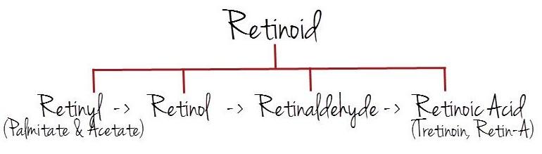 Retinoidai